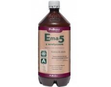 Ema5 z wrotyczem