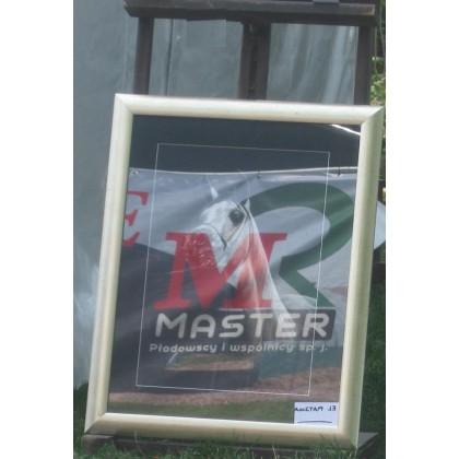 Fotorelacja firmy Master z Narodowego Pokazu i aukcji Koni Arabskich Czystej Krwi - Pride of Poland 2015
